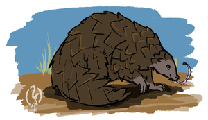 Pangolin by painted-flamingo