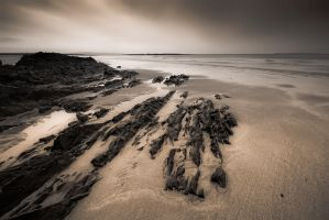 Ballybunion Beach by Locter