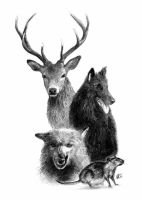 Messrs. Moony, Wormtail, Padfoot, and Prongs by KristiT