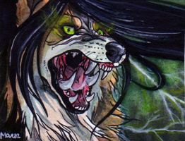 ACEO - Grypwolf by Marzzunny