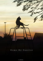 Home By Sunrise Cover by CharlieAmber