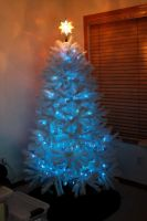 Blue Lighted Tree by botskey