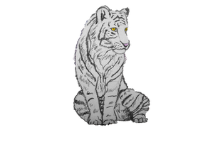 White Tiger by FoxiArtist