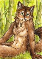 Myenia ACEO Trade by SilentRavyn