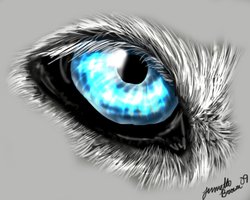 Wolf Eye Icon by sugarpoultry by TheWolfPack