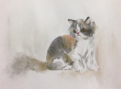 Calico Cat Watercolor by greycat95