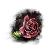 Watercolor Rose by BrittneyBandit