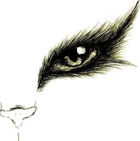 The cat's eye by Michiko559