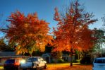 Bremerton Fall Sunset by nemisis11