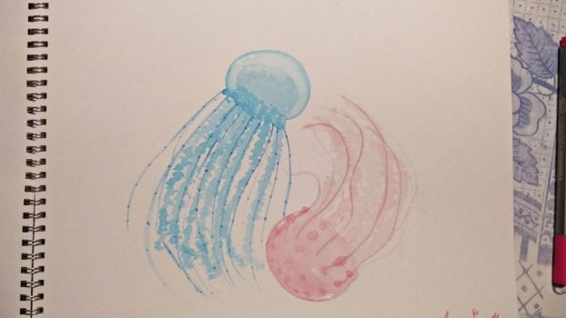 Jellyfish by Toast2023