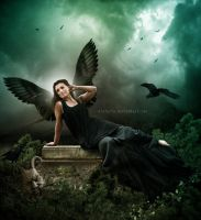Black Angel by oloferla