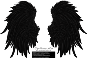 Frill and Fluff Wings - Black by Thy-Darkest-Hour
