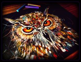 OWL by MarchCoven
