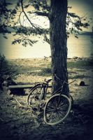 old bike by Jules-89