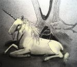 Unicorn from Salzburg by Chequer