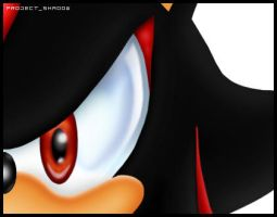 :: Shadow the Hedgehog- by Project-Shadow