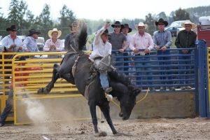 Taupo Rodeo 147 by Sooty-Bunnie
