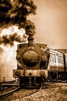Chasewater Steam 6 by Grunvald