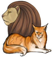 A Lion's Heart by Thilil
