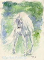 Unicorn in watercolour by Timedancer