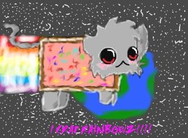 Nyan cat 2 by SonicandSilver