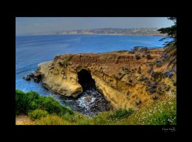 Cove at La Jolla by dx