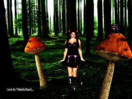 Lost in wonderland by Alice-fanclub