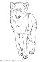 Free Wolf Lineart by Muse-Dog