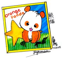 Orange Panda by Jingmamalulu