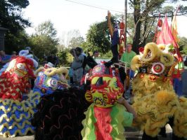 Chinese Lions 5 by Deathirst