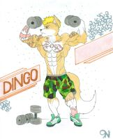COMM - Dingo by Tails-N-Doll