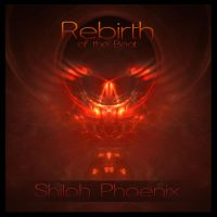 Rebirth of the Beat Cover by Phoenixel-AB