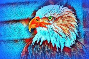 Bald-eagle-abstract by YOKOKY