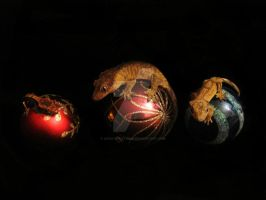Bauble geckos by Ady-182