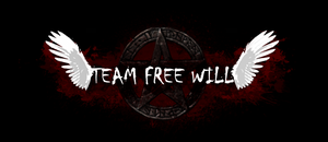 Team Free Will Banner by InkWovenHeart