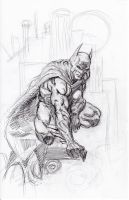 Finch Batman Sketch 11-26-2012 by myconius