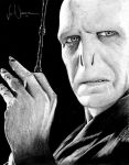 Harry Potter Project: Lord Voldemort by artbyjoewinkler