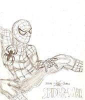 The amazing Spiderman by A-Black-Angel