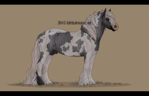 Gypsy Vanner Auction #6 ENDED by Jullelin
