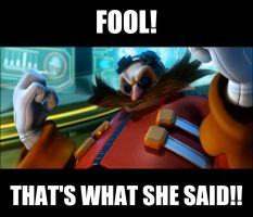Eggman Sez: That's What She Said by totoro10