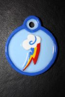 Rainbow Dash Medallion by CopperFlare