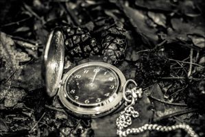 Time goes by... V by db-photoblogDOTcom