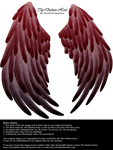 Solace Wings - Red to Black by Thy-Darkest-Hour