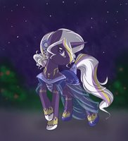 A Night For The Majestic by BambooDog