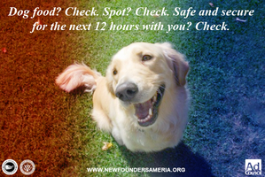 Purge Pet Safety Ads: For Dog Owners by MrAngryDog