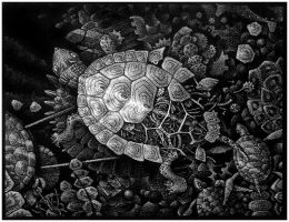 zoomechanisms - the turtle by Otek-ON
