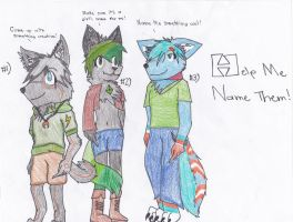 HELP ME NAME THEM! Pg. 1 (Please Read Description) by Bradley-The-Blue-Fox