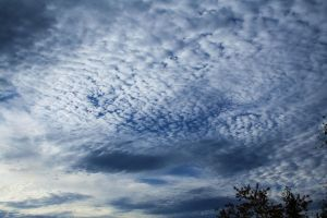 spottedclouds by m40a2
