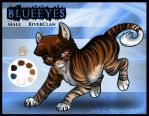 Blueeyes Reference by RussianBlues