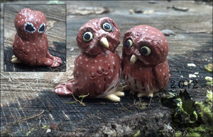 Mini Pygmy Owl Sculptures by dipnoi